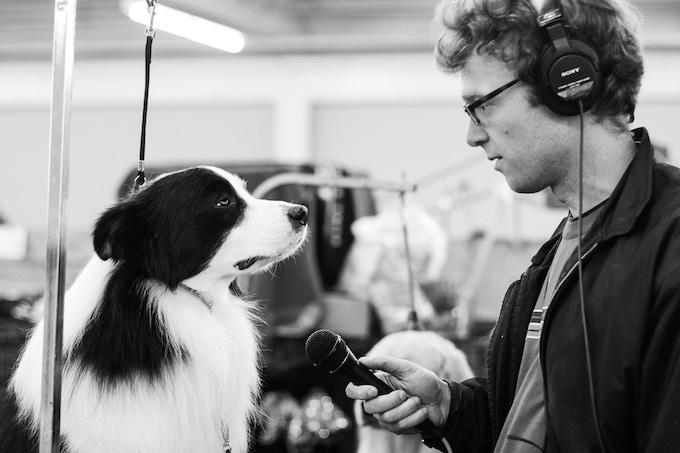 Chris interviewing a dog - Photo by Alyssa Kapnik Samuel