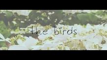 The Bird EP's