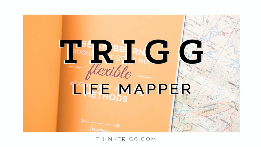 The Trigg Life Mapper project video thumbnail