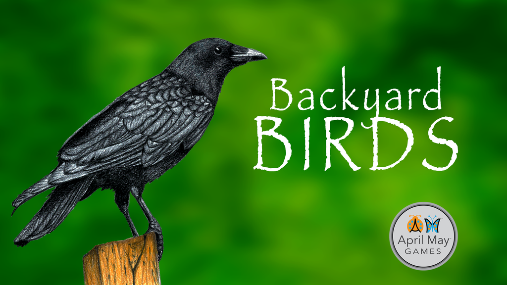 backyard birds a card game for the entire flock project video