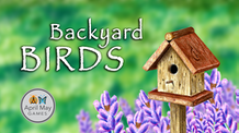 Backyard Birds: A Card Game for the Entire Flock