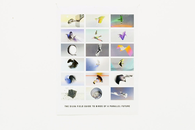 Rick Silva - The Silva Field Guide to Birds of a Parallel Future