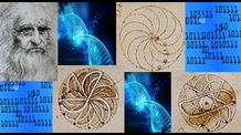 Evolutionary Algorithms to Optimize da Vinci Gravity Wheels