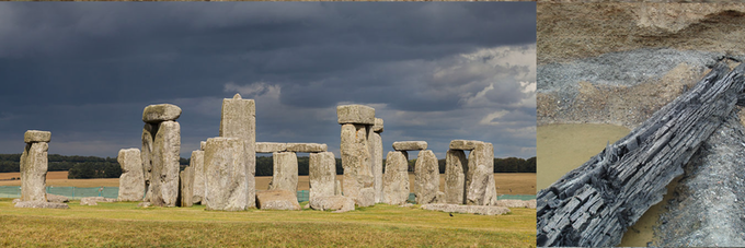 Stonehenge Image Copyright: Diego Delso, Wikimedia Commons, License CC-BY-SA 3.0 Bog Oak Image Copyright: Abudimir85