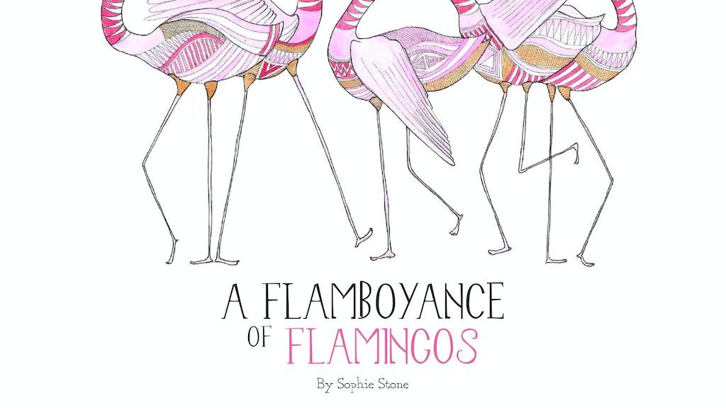 A Flamboyance of Flamingos project video thumbnail