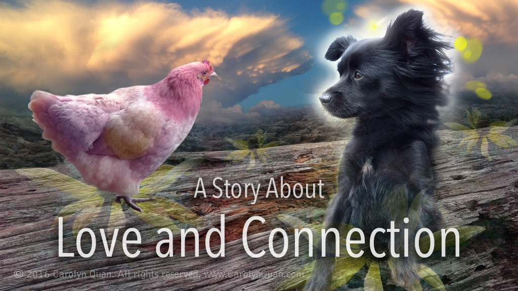 Inspiring Children's Book About a Dog and Her Endless Love project video thumbnail