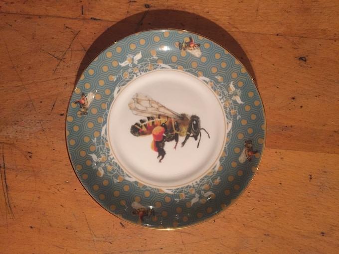close up of the saucer