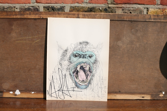 An illustration of an endangered species of your choice on selvedge paper.  This is one example of a louis masai illustration - a snub nosed monkey
