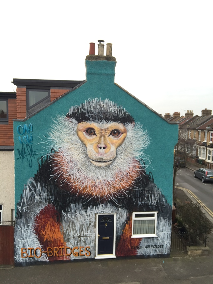 For this pledge you may also choose to have a realistic species painted instead of a patch work style mural - This is an example of a realistic looking mural