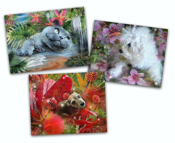 """These are some samples of custom pet collages. Pledge $250 (8""""x10"""") or $400 (16""""x20"""") and I will create a unique one-of-a-kind collage featuring your pet for you to cherish for a lifetime. Featured here are Tiki, Lucas and Bella."""