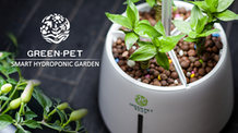 Green Pet – A Smart Hydroponic Garden in Your Family