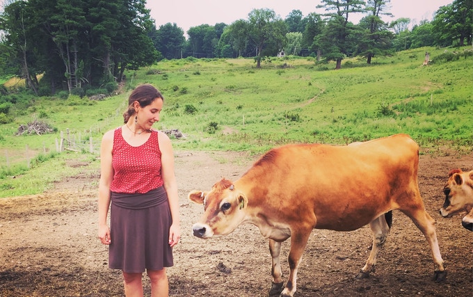 Hannah and the Cows