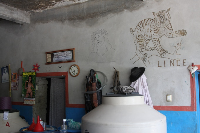 Palenque of Maestro Aquilino Garcia Lopez