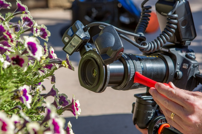 Macro phototography focus