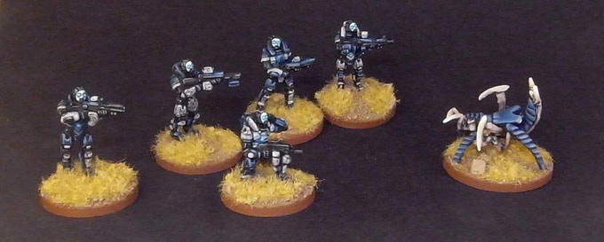 Reaper Team and Hive Swarm