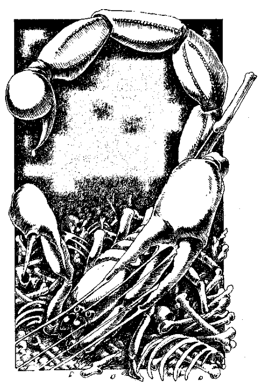 Original 1984 interior illustration #8 by Leo Hartas - to appear in colour in this Collector's Edition