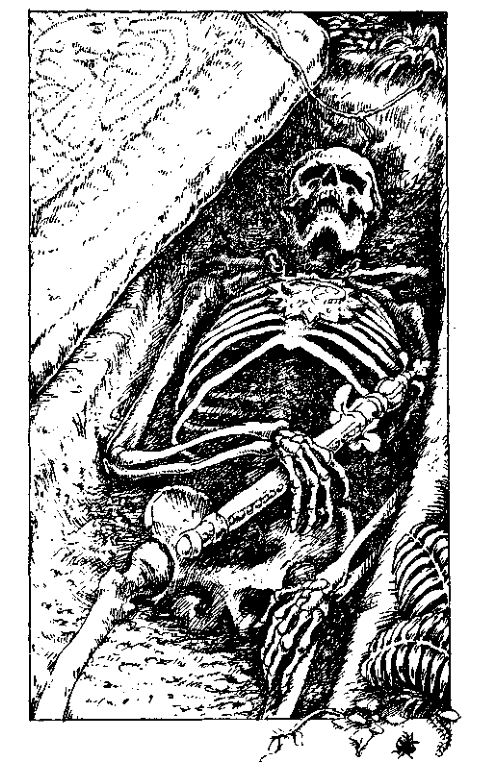 Original 1984 interior illustration #13 by Leo Hartas - to appear in colour in this Collector's Edition