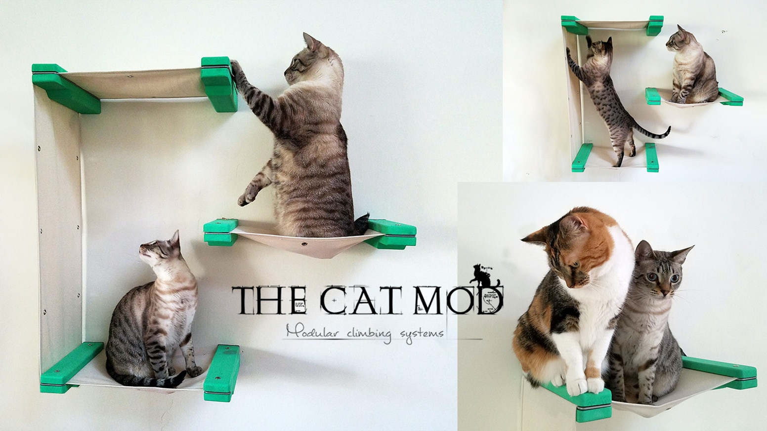 Our modular design offers limitless freedom to create the perfect custom space for your cat. Although our Kickstarter has ended, we encourage you to subscribe to the email list bellow to get notified as soon as we officially release it on our site.