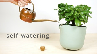 Ultimate Self-Watering Flowerpot, The Natural Balance