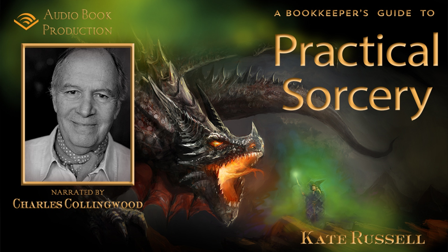 Help record a magical and humourous fantasy adventure about courage, passion and friendship, narrated by Charles Collingwood.
