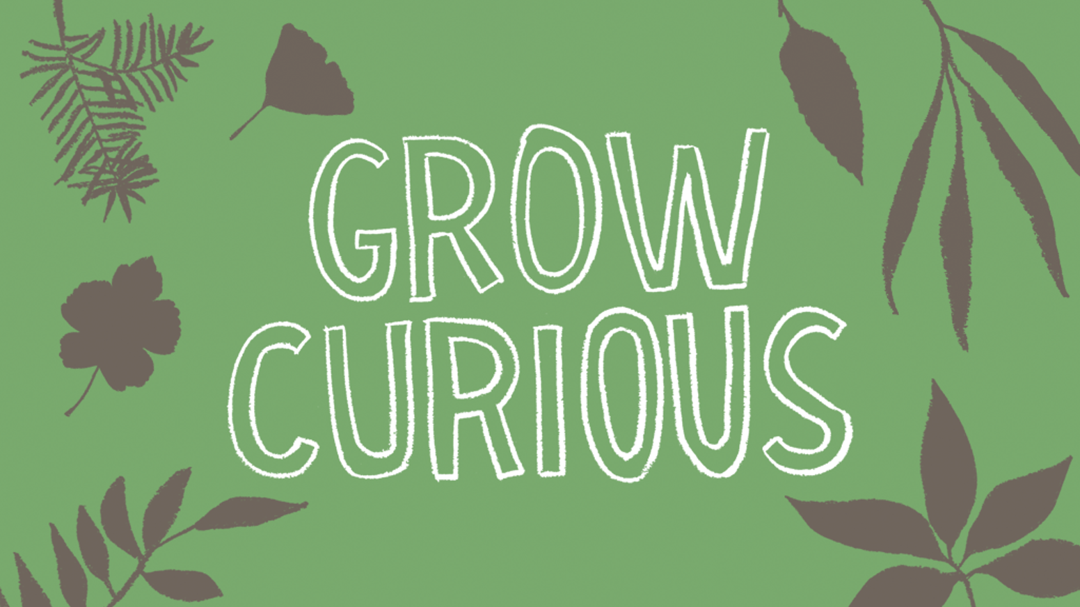 A guidebook of curious and creative activities to cultivate joy, wonder, and discovery in you and your garden.