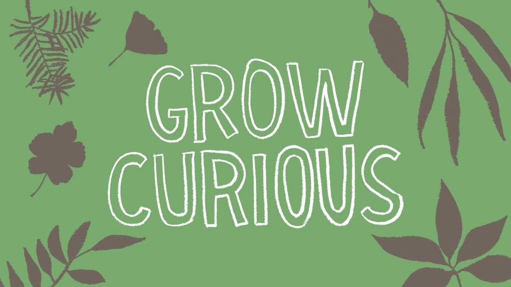Grow Curious: A Gardener's Creative Activity Book project video thumbnail
