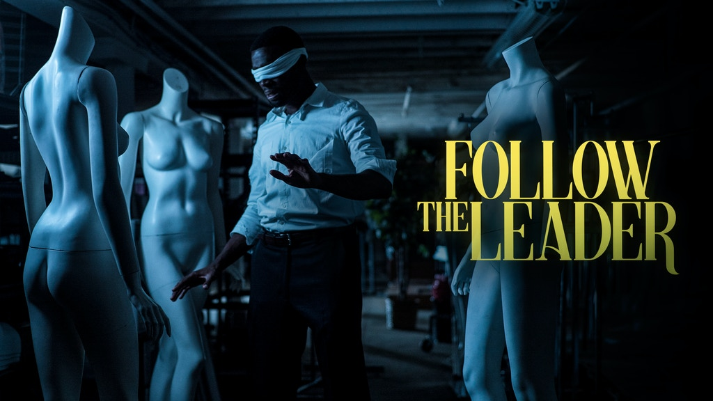 Follow The Leader project video thumbnail