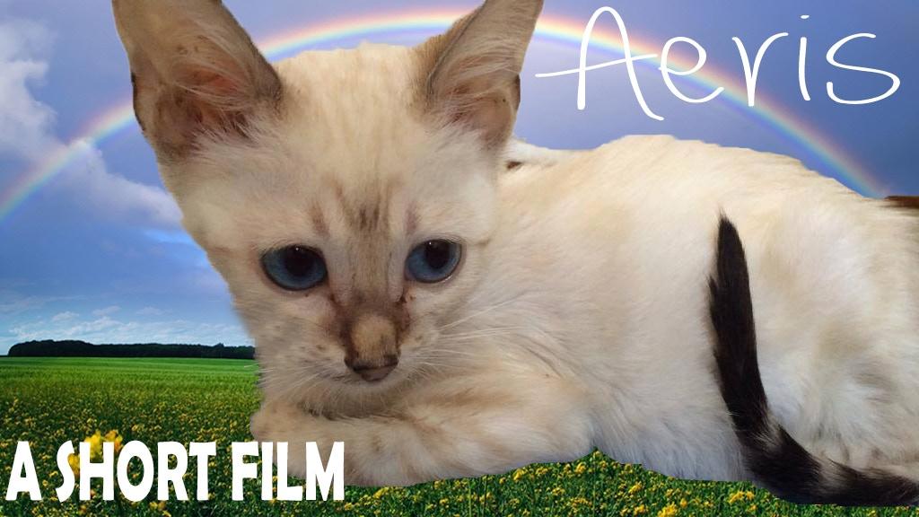 Aeris project video thumbnail