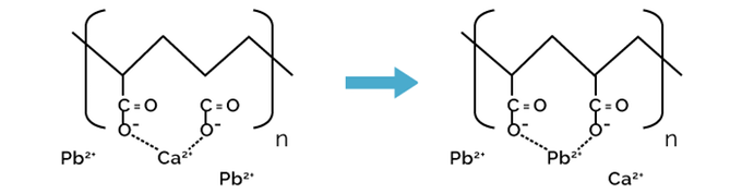 Mechanism of Lead Ions Removal