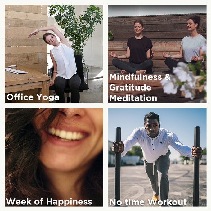 Online courses from the Happiness Starter Pack (3 courses still to be filmed)