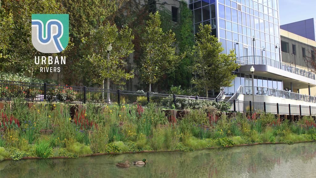 Floating Gardens in the Chicago River project video thumbnail