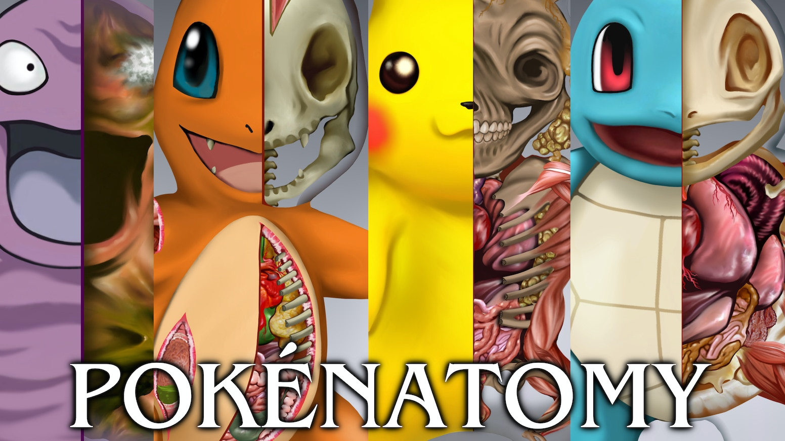 A transformative educational art project, dissecting, expanding, & exploring the original 150 Pokémon in a fully illustrated artbook.