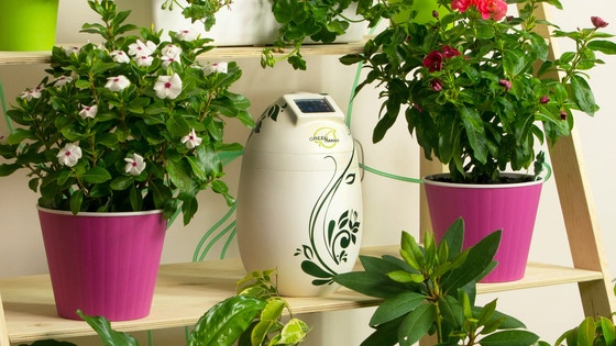 Track GreeNanny, smart self-watering system for indoor plants 's
