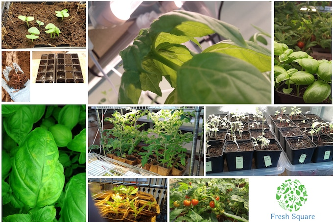 Research and Development on Soil and Plants