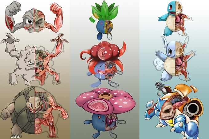 Poknatomy An Unofficial Guide To The Science Of Pokmon By