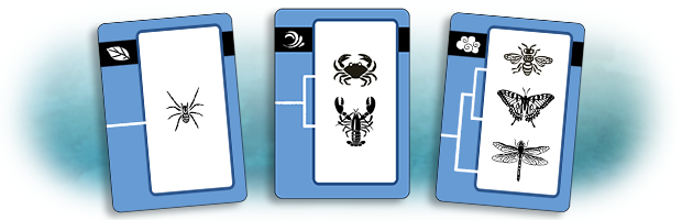 These three cards form a match. Color and clade (arthropod) are all three the same, while number and environment are all three different.