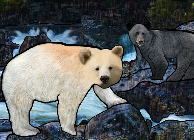 Spectacular Spirit Bear