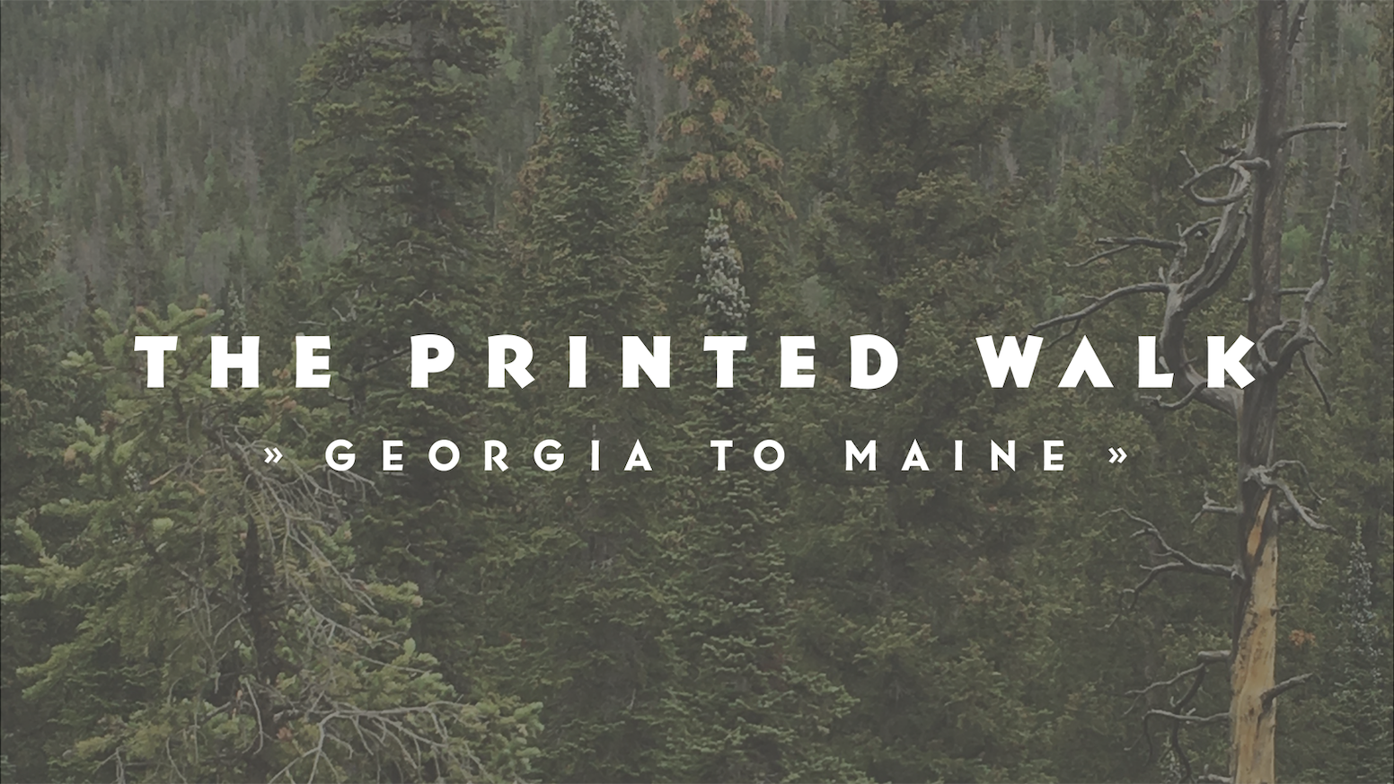 The Printed Walk is a letterpress-printed chronicle of an artist's 2017 thru-hike of the Appalachian Trail.