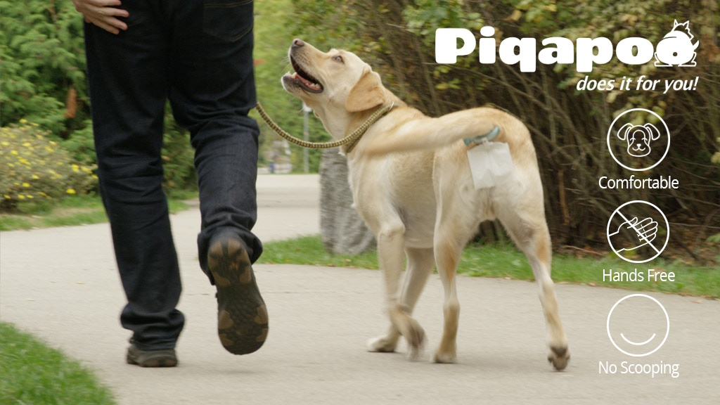 Piqapoo - Collects your dog's poo for you - HANDS-FREE! project video thumbnail