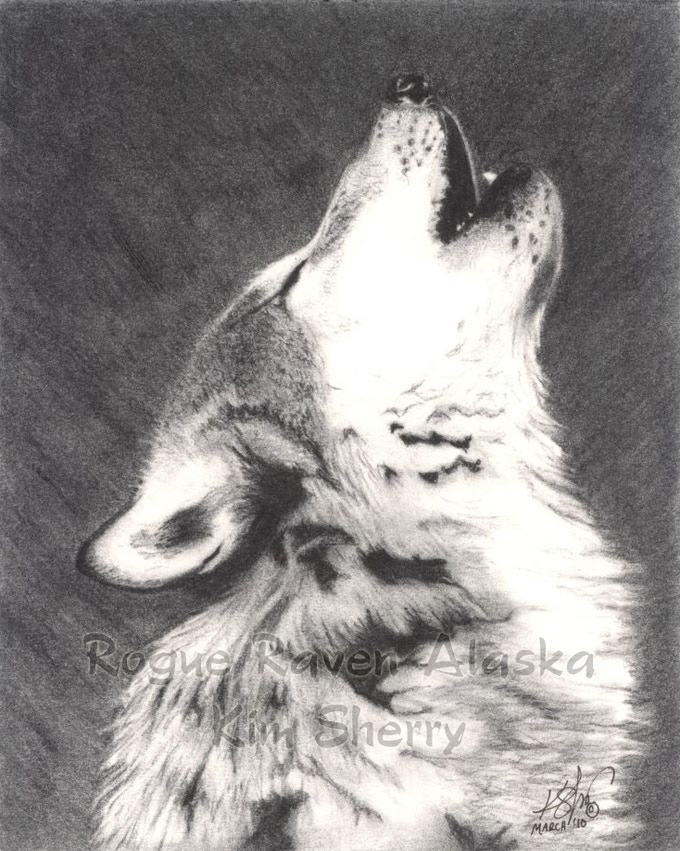 'Serenade' - charcoal by Kim Sherry