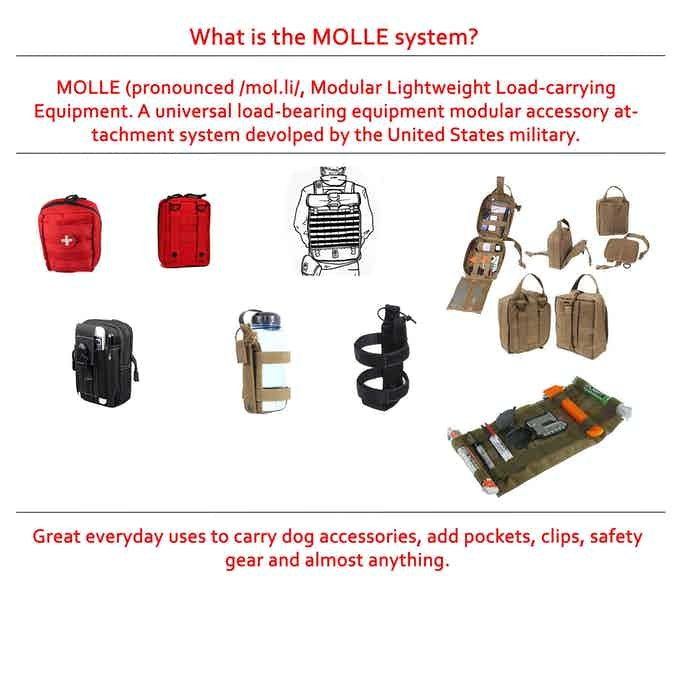 The MOLLE system