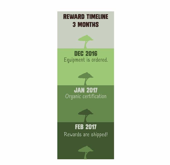 Funding Timeline