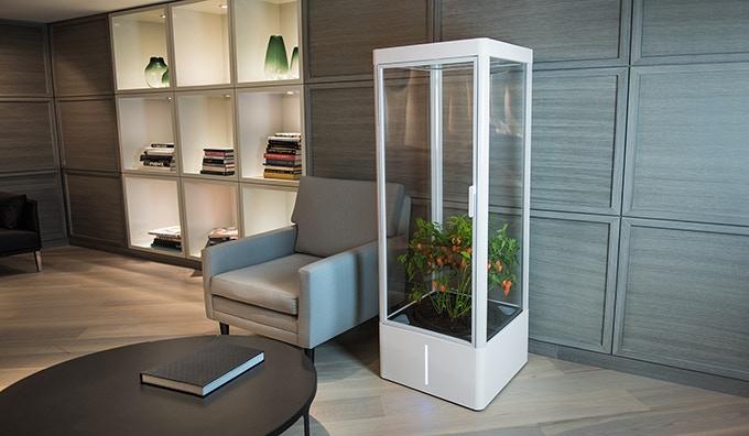 Interior idea - in the lounge