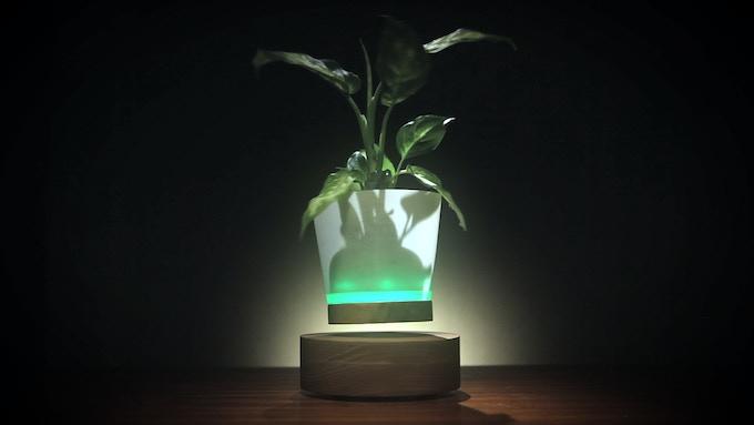 Float your plants!