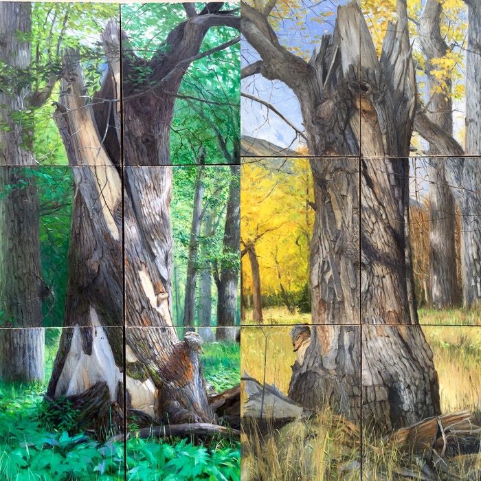 This series of paintings focuses on climate shifts and seasonal changes around a single cottonwood tree in south-central Alaska.
