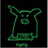 DigiPig