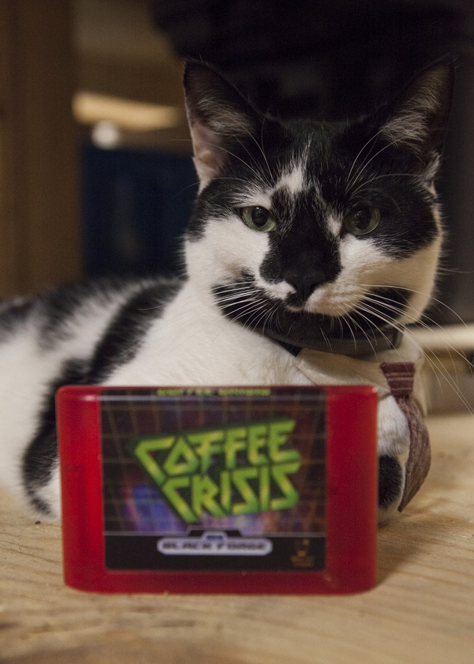 The Most Interesting Cat Video Game Studio Ambassador in the world.