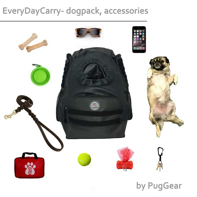 #EDC - everyday carry with dogpack