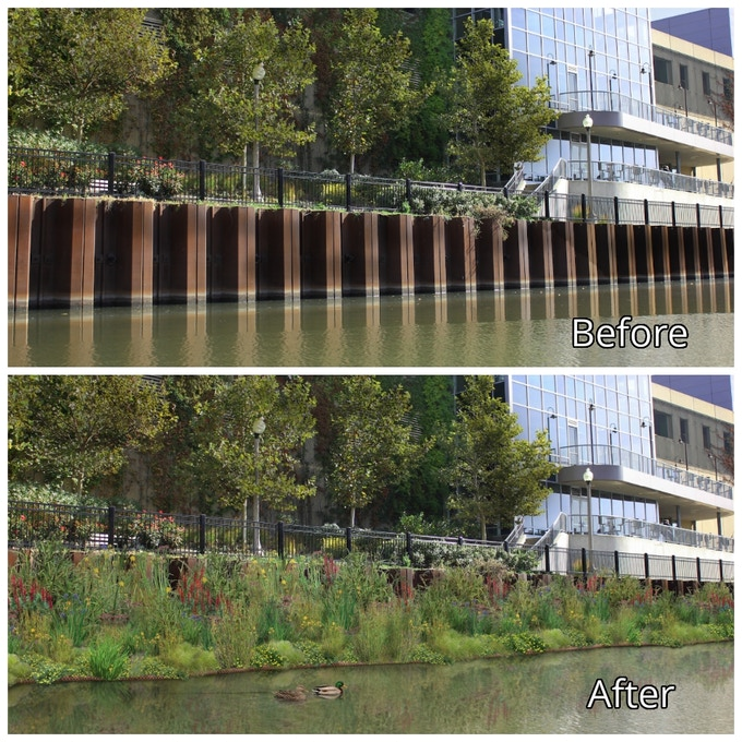 This is a before and after shot at our installation site, near Whole Foods Market in Lincoln Park, Chicago, Illinois
