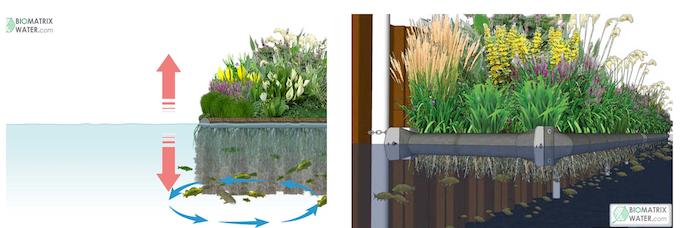 Biomatrix Water hardware designs